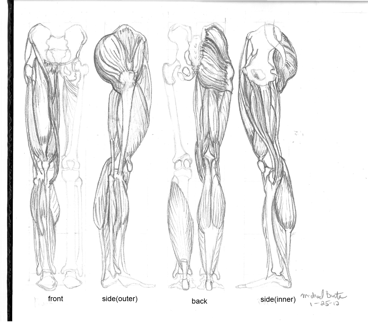 It is a photo of Enterprising Muscle Leg Drawing