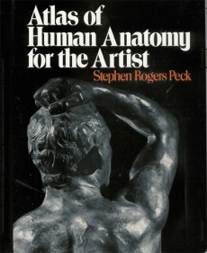 Atlas Of Human Anantomy